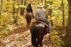 Des cavaliers ayant faient etape au camping la porte dautan pres de la rigole