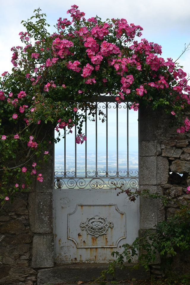A flowered door in the village of Saissac near Montolieu